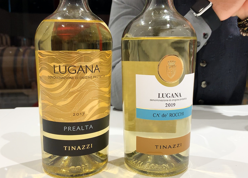 A comparison between two Luganas: Lugana Ca' De' Rocchi vs Lugana Prealta