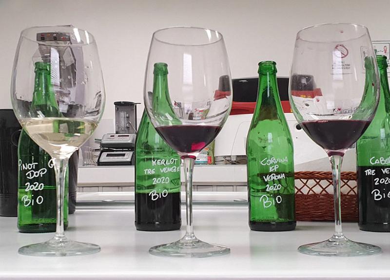 Italiano Bio: Italian Organic Wines